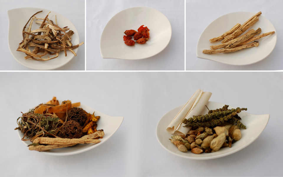 Chinese Herbal Therapies